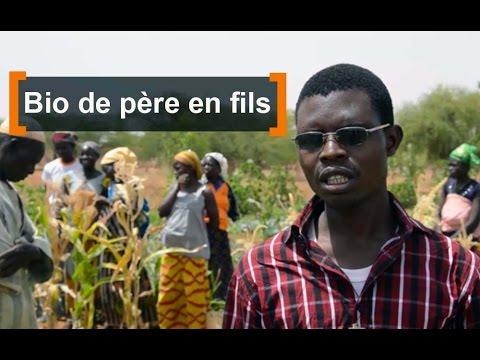 Burkina Faso : Bio de père en fils