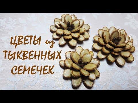 Цветы из тыквенных семечек / DIY