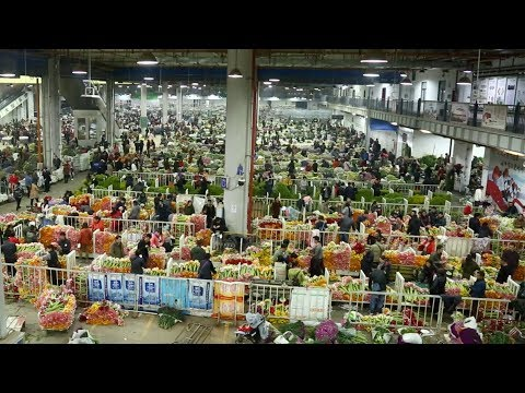 One of Asia's biggest flower markets in bloom in Kunming, Yunnan Province