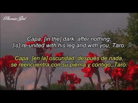 Alt-J (∆) - Taro [Sub español + Lyrics]