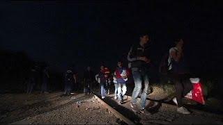 Immigration : renfort des policiers bulgares à la frontière hongro-serbe
