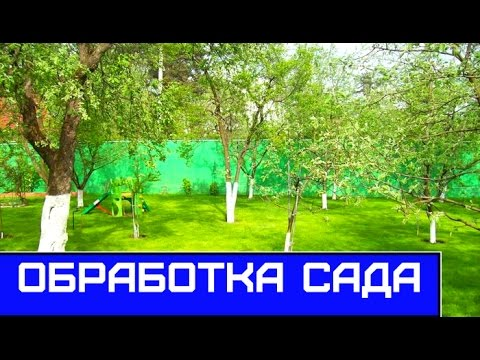 Гремучая смесь для весеннего опрыскивания деревьев сада