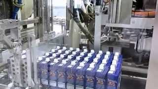 UHT Milk Produced & Packaged in France: The MoMo Story by Glob Marketing