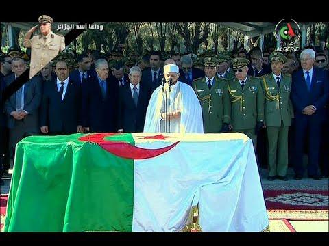 Arab sex algerian