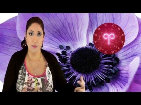 celebrity tarot celebrity love match celebrity love compatability celebrity horoscopes celebrity birthdays celebrity astrology celebrity astro compatability