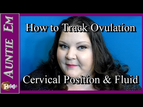 How to Check Your Cervical Position & Cervical Mucus