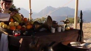 Отель Moevenpick Resort & Residences 5*, Aqaba, ИОРДАНИЯ, Акаба (туры, бронь, отзывы, видео)
