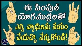 ఈ సింపుల్ యోగముద్రలతో ఎన్ని వ్యాధులను నయం చేయచ్చొ నేర్చుకోండి! | Yoga Mudras | Viswanethra