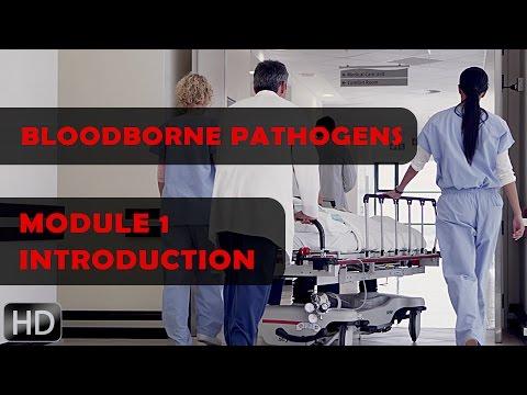 Bloodborne Pathogens - Introduction to Online Course