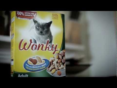 Orbital | Wonky | Official Video