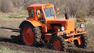Tractor T-40AM, plowing the garden /// Трактор Т-40АМ, вспашка огорода