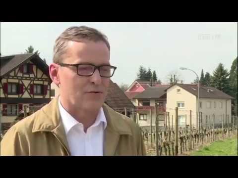 Media niemieckie w Polsce. Repolonizacja. O skandalicznym liście Ringier Axel Springer 2