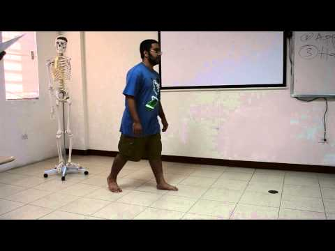 Six Gait Abnormalities