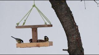 как сделать простую деревянную кормушку для птиц