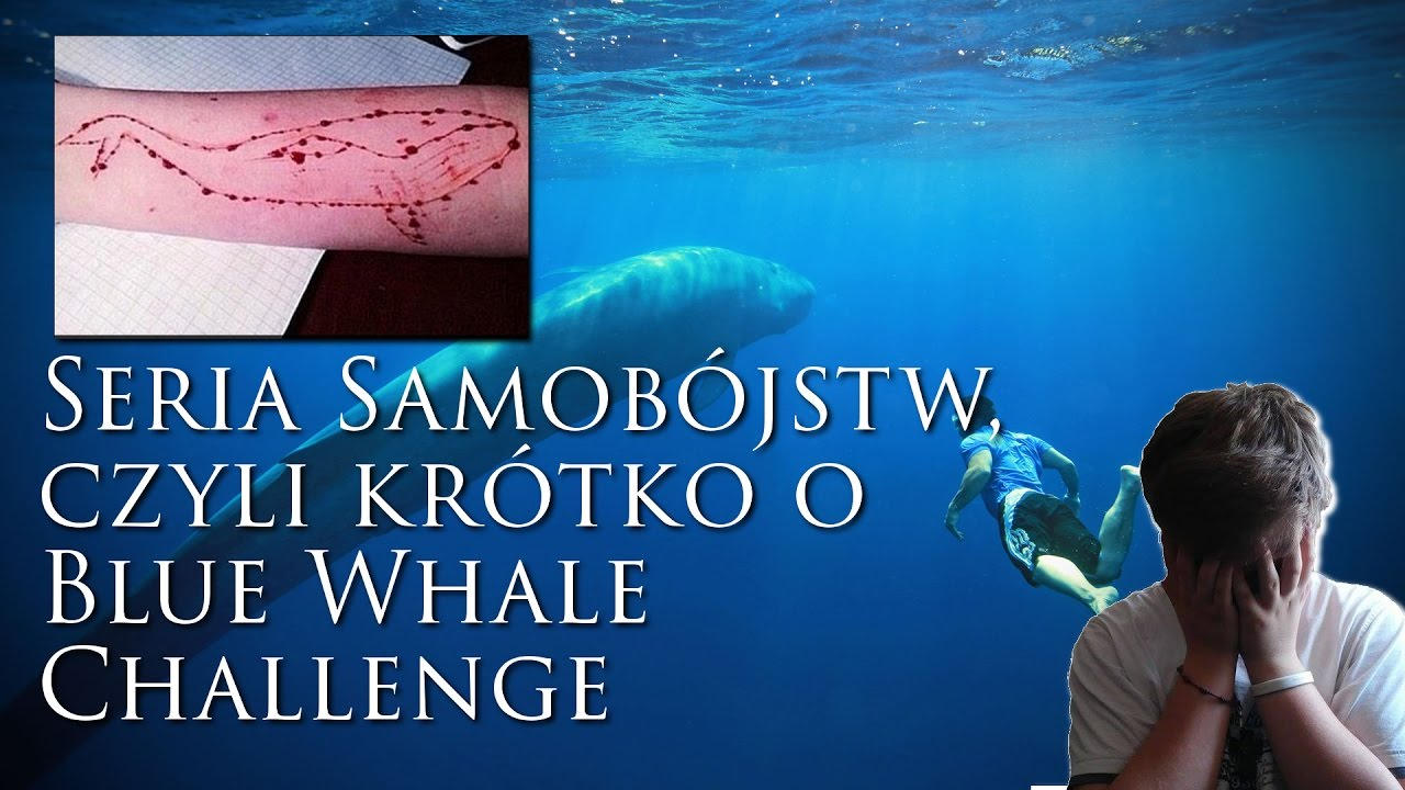 Seria samobójstw, czyli krótko o Blue Whale Challenge ...