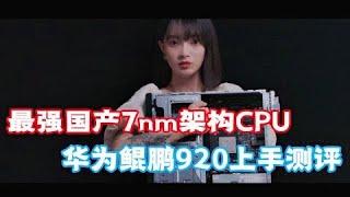 【4K】国产最先进7nm工艺,ARM架构CPU- -鲲鹏920上手简评(CC字幕)