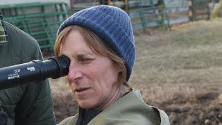 Kelly Reichardt: 'My films are about people who don't have a safety net' streaming