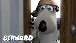 Bernard Bear | The Fumigator 2 AND MORE | 30 min Compilation | Cartoons for Children