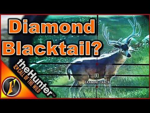 Diamond Revenge! Could it be?   theHunter: Call of the Wild 2018