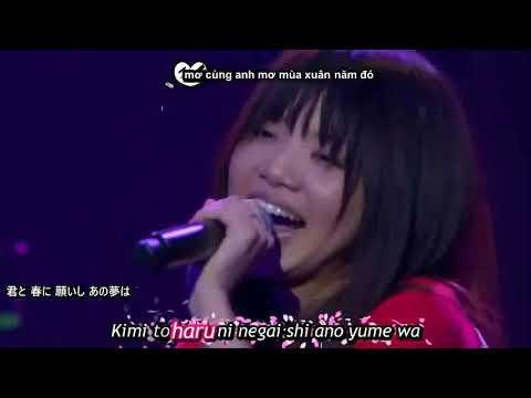 HỌC TIẾNG NHẬT QUA BÀI HÁT Sakura   Ikimono gakari Live [Japan Sub ]