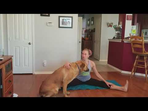 Beachbody On Demand Yoga Studio - Post Cardio Stretch - with a Yogi