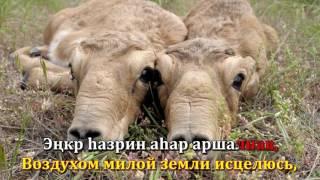 Караоке на Калмыцком зыке. Мини Торскн Моя родина Калмыкия