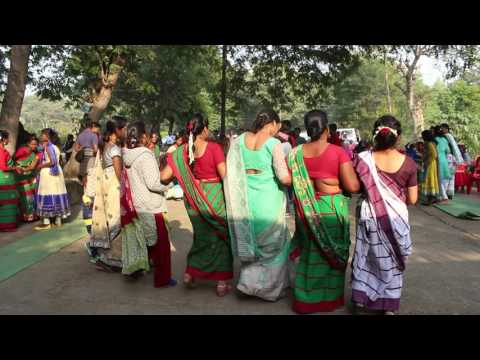 Kherwad Bir Sodey Korba Chhattishgarh 2016