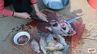 Pho Bộ Lòng Pịa Cá Rô Phi ,Món Ăn Đậm Chất Dân Tộc Thái Tây Bắc