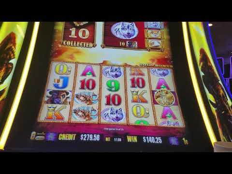 Buffalo Gold Slot Machine - Huge Win!
