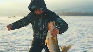 ОТМЕННЫЙ КЛЕВ СУДАКА НА ВИБЫ Зимняя рыбалка в Тольятти Саша Котов САМЫЕ УЛОВИСТЫЕ ПРИМАНКИ 4K