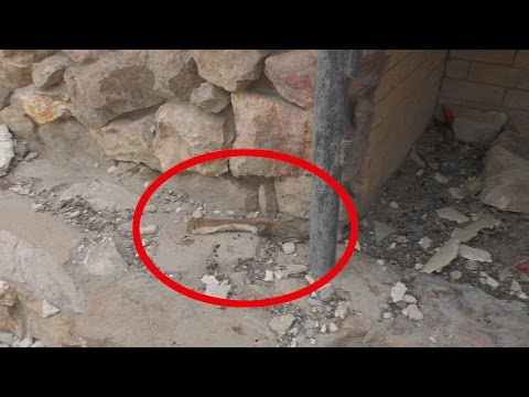 Found Some Interesting Stuff In ABANDONED House In The Middle Of Nowhere | Found Abandoned Military
