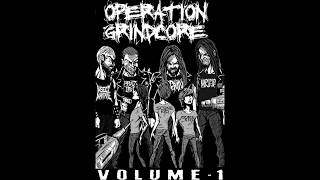 My Favourite Grindcore Compilation
