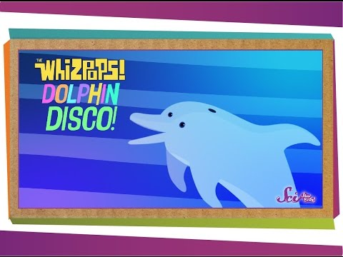 Whizpops! Dolphin Disco Music Video - #readalong