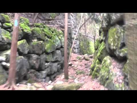 Exploring Forks of the Credit Lime Kilns