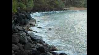Kauai Encounter