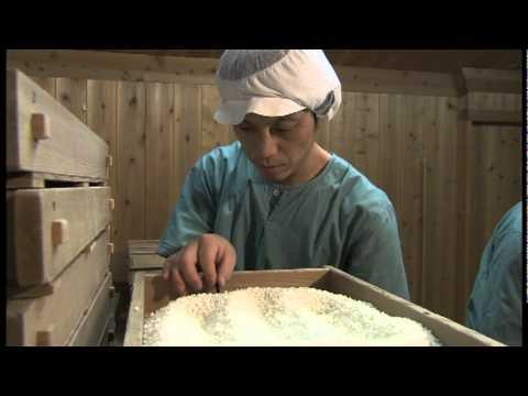Hakkaisan's Sake Making 1