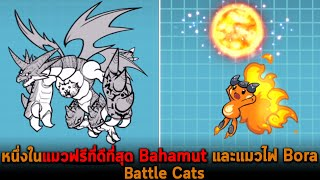 หนึ่งในแมวฟรีที่ดีที่สุด Bahamut และแมวไฟ Bora Battle Cats