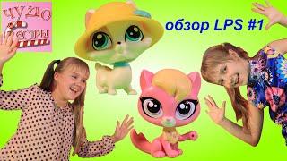 LPS. Обзор Littlest Pet Shop из новой коллекции. Кошки и собачки.