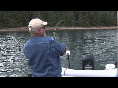 The New Fly Fisher - Bowman Island Charters