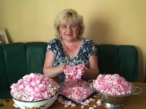 Чайная роза - Варенье для здоровья .