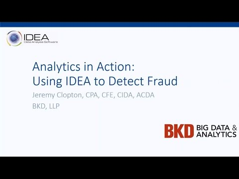 Analytics In Action: Using IDEA To Detect Fraud
