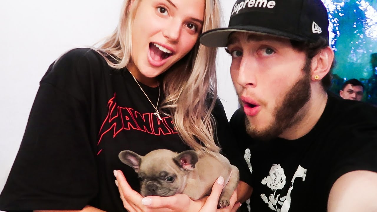 WE GOT A NEW PUPPY  YouTube