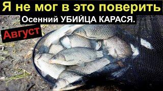 КОРОЛЬ УБИТ НОВЫЙ УБИЙЦА КАРАСЯ РЕЗУЛЬТАТ ШОК Супер рыболовная насадка Карась клюёт жадно