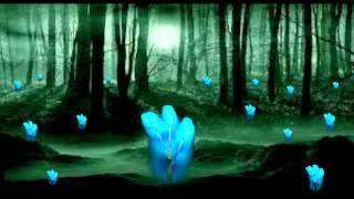 MAX BRUCH - Kol Nidrei, Opus 47 - Philharmonia Slavonica and Albert Lizzo