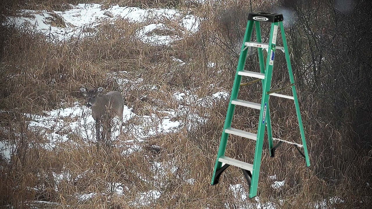 Deer Hunting Strategy Step Ladder Youtube