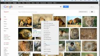 How to Copy and Paste Pictures from Google