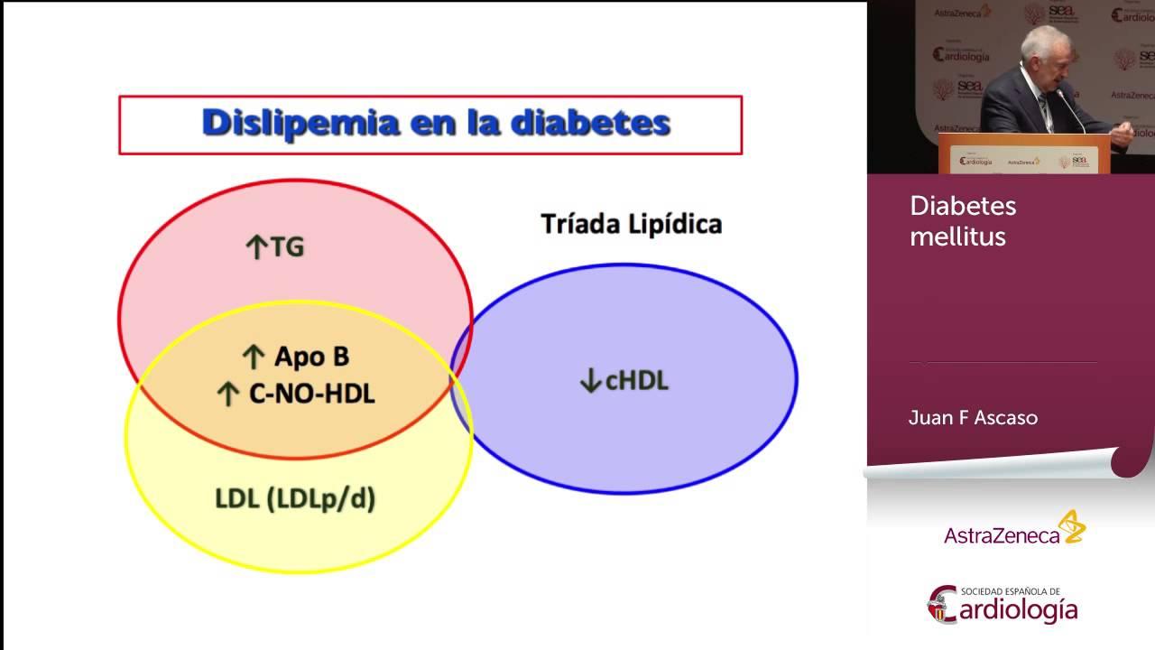 guia rapida de practica clinica diabetes mellitus