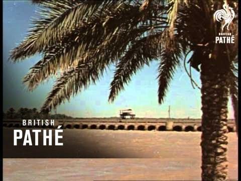 Ageless Iraq Reel 2  (1950-1959)