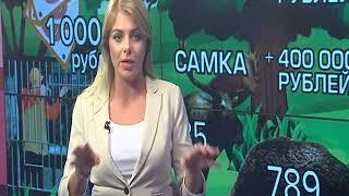 В Ярославской области стартует сезон летне - осенней охоты