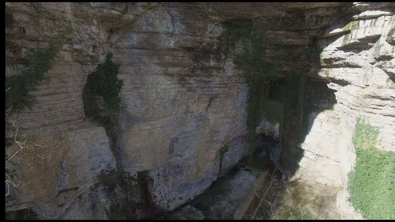 chauve-souris grotte datant